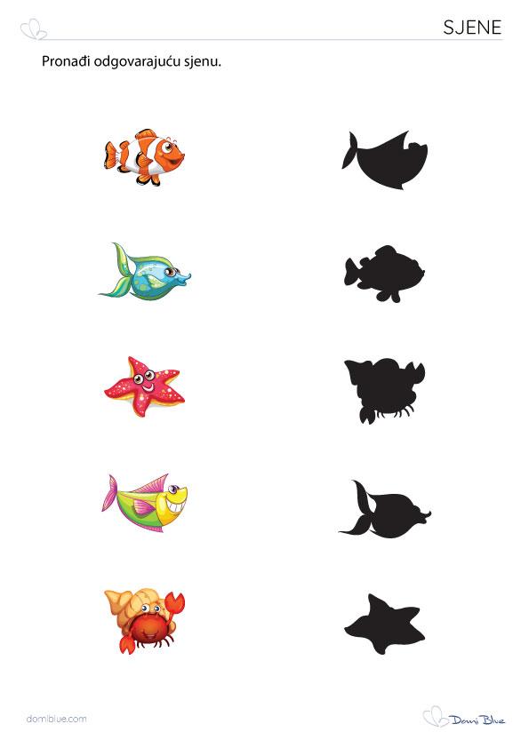 sjene ribe